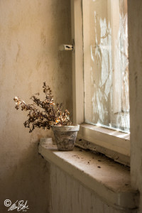 Fotografie - Lost Space - Window
